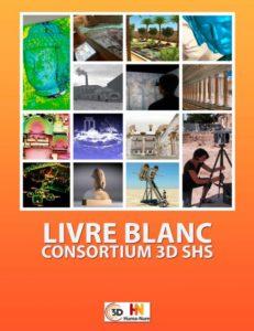 Le Livre Blanc du Consortium 3D SHS